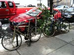 legal and illegal street bike parking