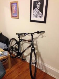 Nell stolen bike1