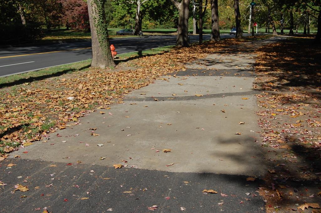 MLK Path Repairs (8)