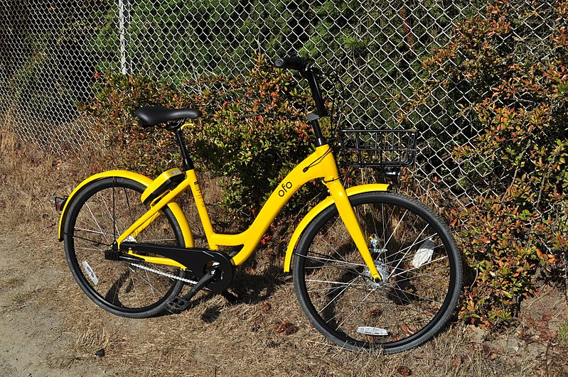Dockless Bike Share: Questions, Concerns, Hopes – Bicycle ...