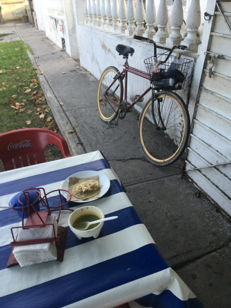 table of food alongside bike