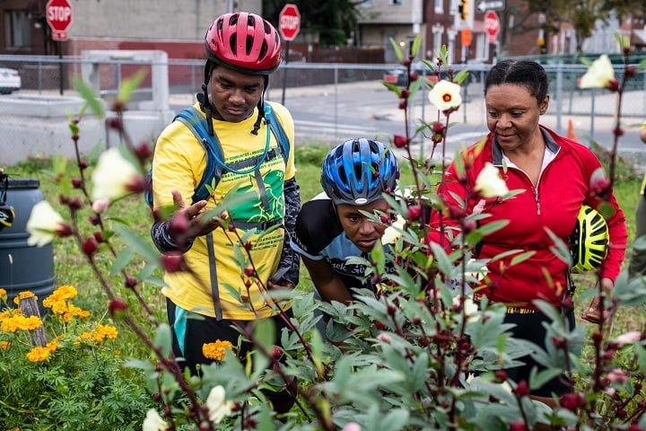 Three cyclists explore an urban farm